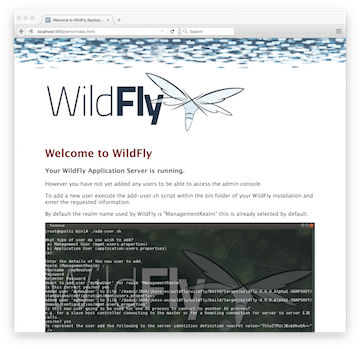 WildFly Admin Guide